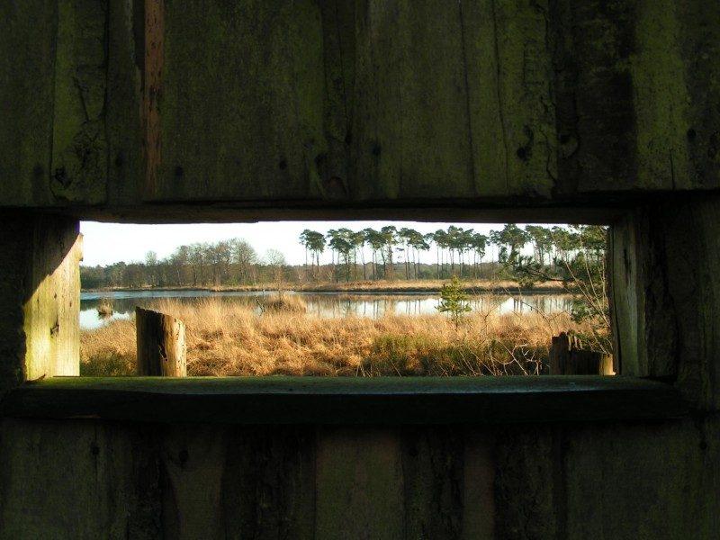 Vogelkijkscherm met zicht op de Huisvennen