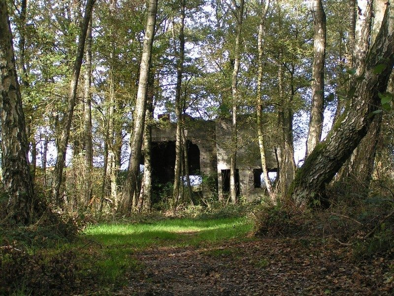 Landgoed de Hamert, ruïne