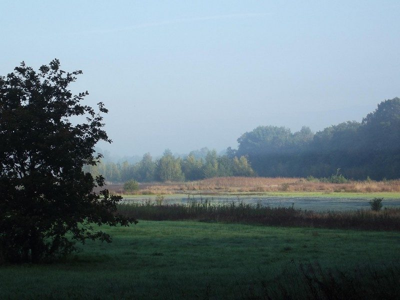 Landgoed de Hamert, omgeving Heerenven