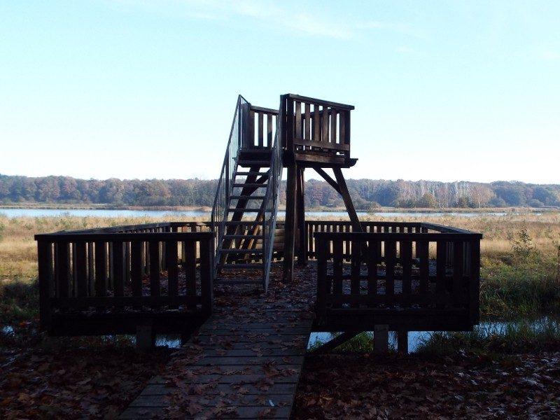Uitkijktoren met zicht op het Straelens Broek