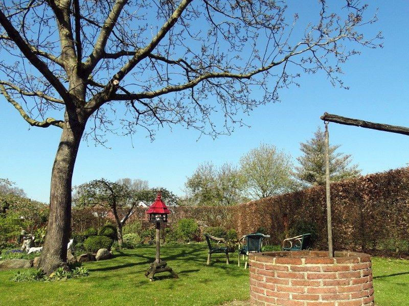 De tuin achter het Slaait'nhoes