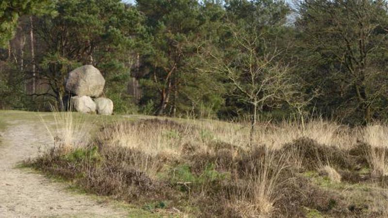 Gedenksteen van Tienhoven