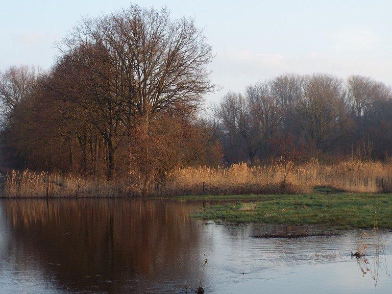 Hoogwater in de Tungelroyse Beek