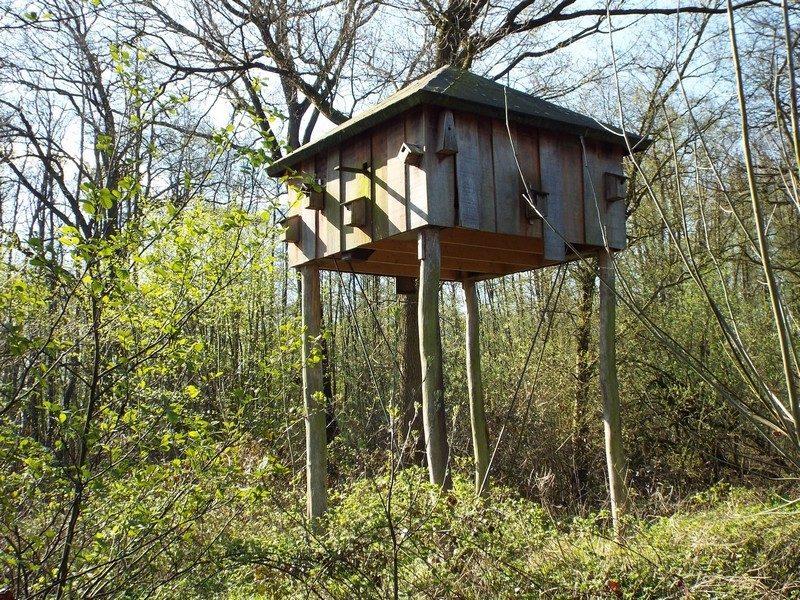 Vogeltoren