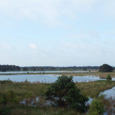 Wandelroute Landschotsche Heide-tocht, te Middelbeers