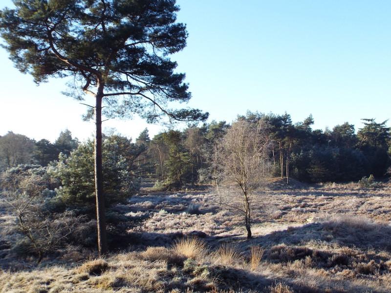 De Stippelberg in een wintersfeertje