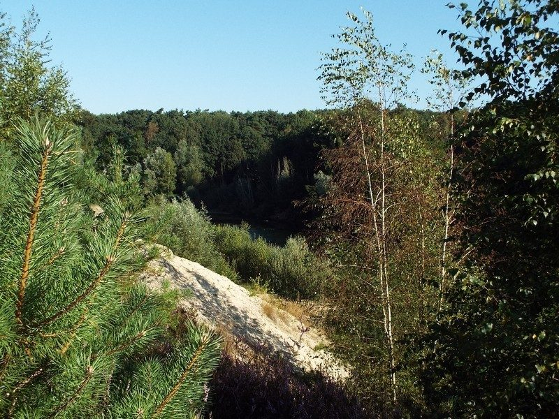 Natuurgebied Jammerdal