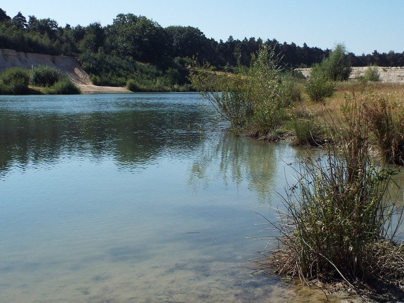 Groeve in natuurpark de Holtmühle