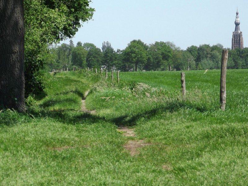 De weg terug naar Hilvarenbeek