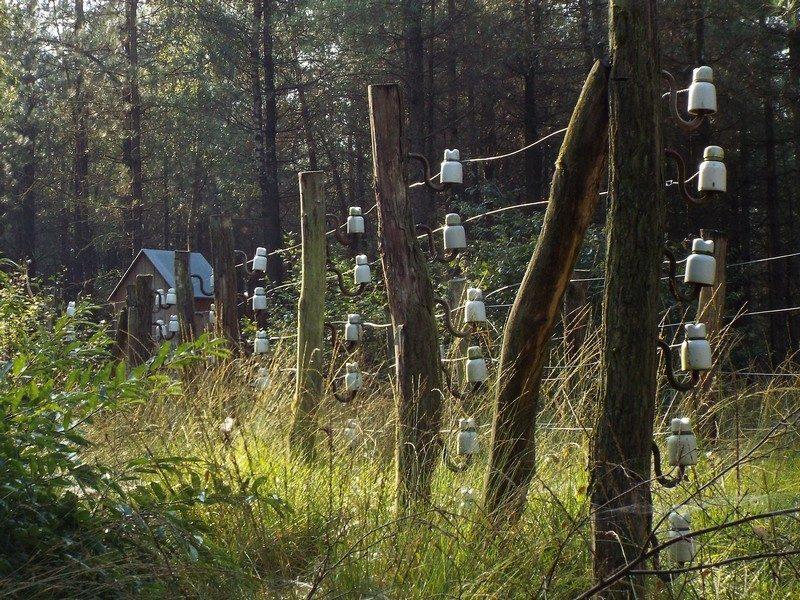 De Dodendraad, grensversperring tijdens WOI