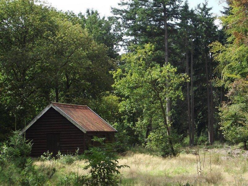 Voormalige directiekeet in het Leenderbos