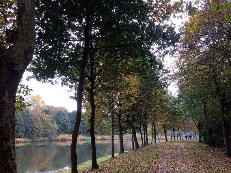 Langs de Ems vallen de bladeren