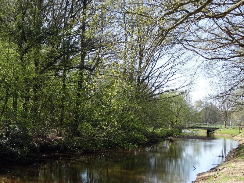 De Ruiten Aa met in de verte de Wijvebrug