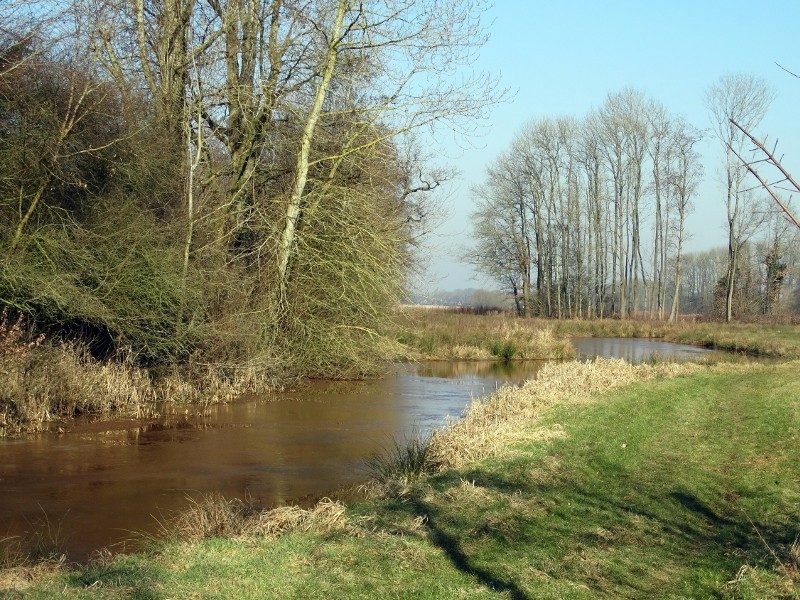 Langs de Ruiten Aa bij Wessinghuizen