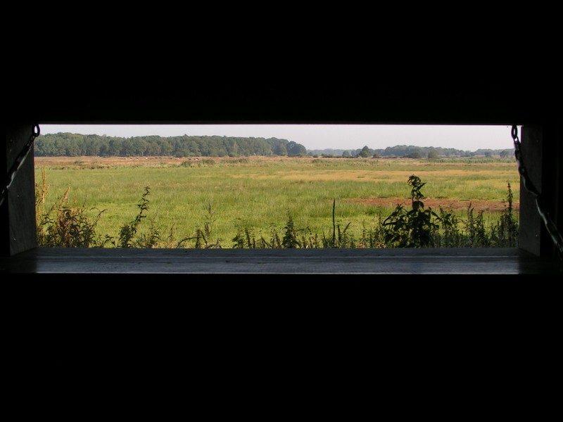 Uitzicht over Riels Laag vanuit vogelkijkhut