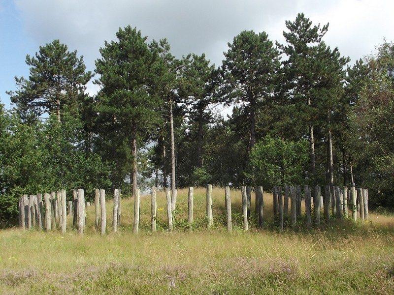 Grafheuvel op de Regte Heide