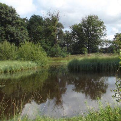 Wandelroute Nieuwkerk en Regte Heide-tocht, te Goirle