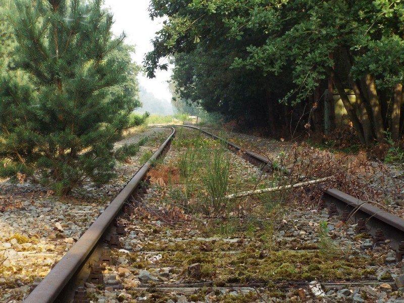 De IJzeren Rijn, een buiten gebruik geraakte spoorlijn