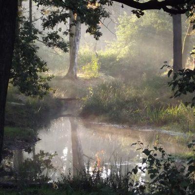 Wandelroute Rosep-tocht, te Oisterwijk