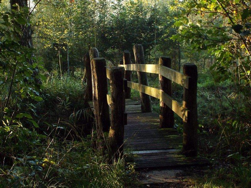 Een van de drie brugjes over de Rosep