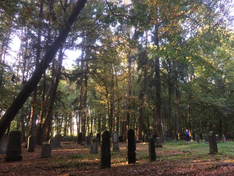 De Joodse begraafplaats in het bos
