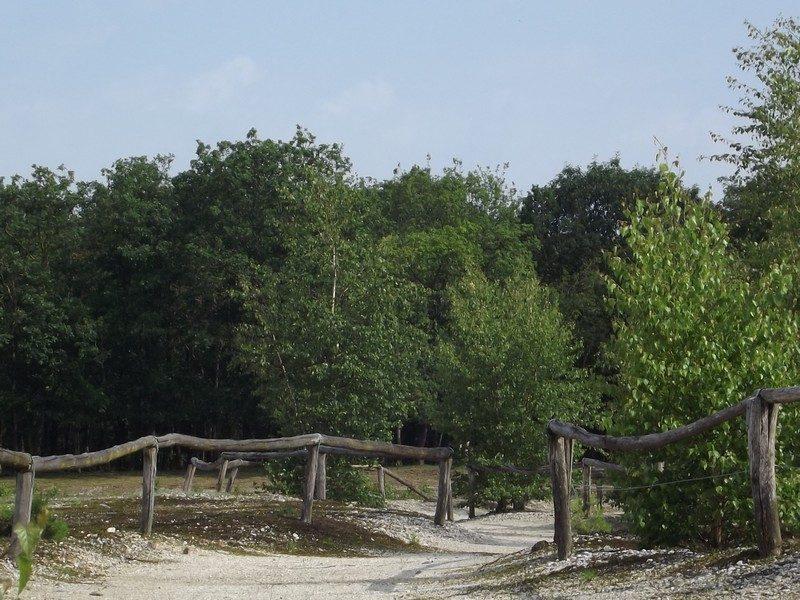 Natuurgebied Molenheide