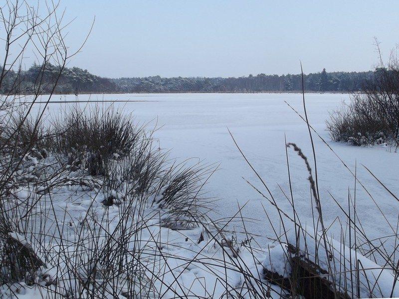 Geheel dicht gevroren Hazenputten in 2013