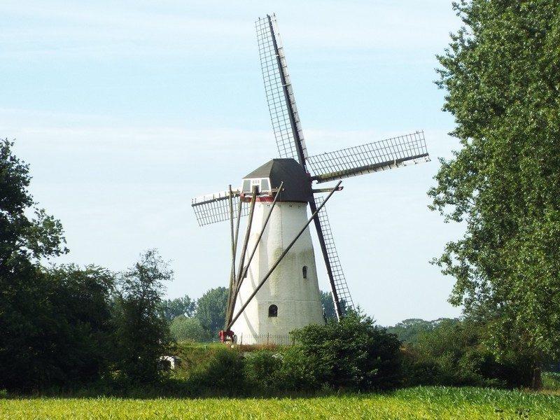 Genenberg molen, voormalige korenmolen