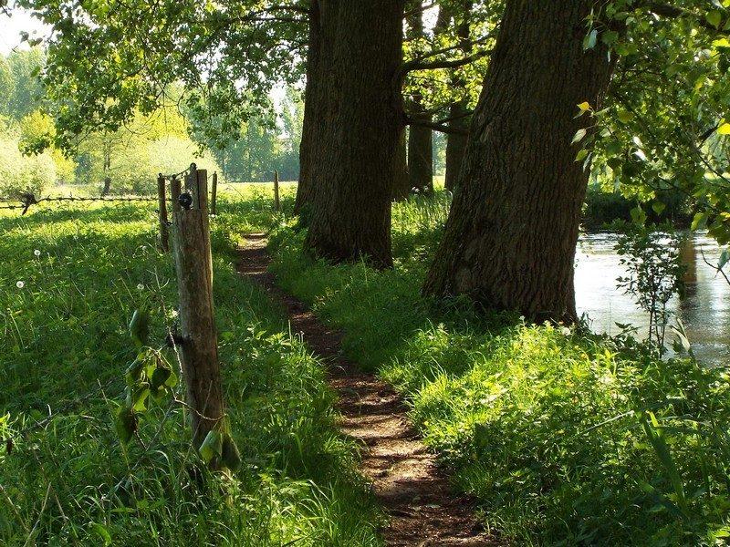 Smal pad langs de Dommel