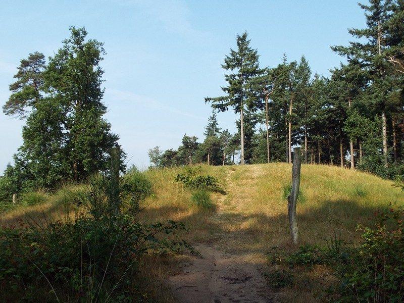 Recent ontdekte grafheuvel in de Venrode