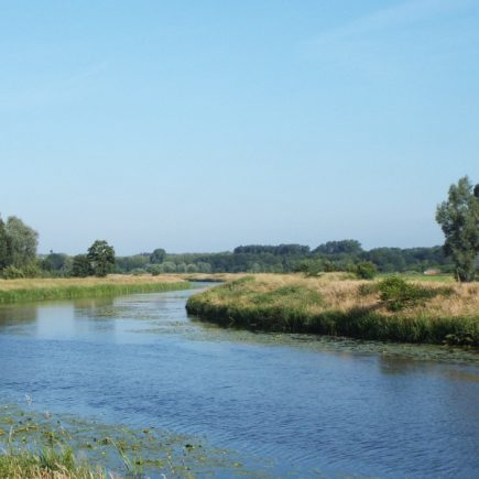 Wandelroute Naar het Bossche Broek, te Sint-Michielsgestel