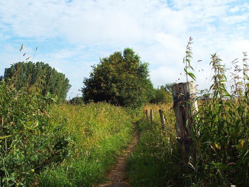 Dommeldal bij buurtschap Oud Rijsingen