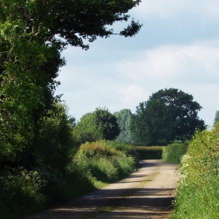 Wandelroute Maasheggen-tocht, te Beugen