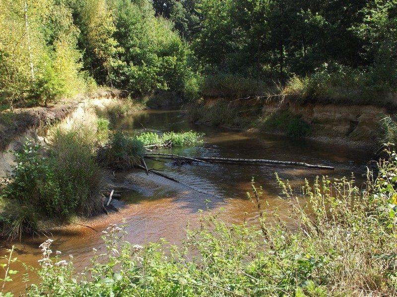 Het riviertje de Swalm