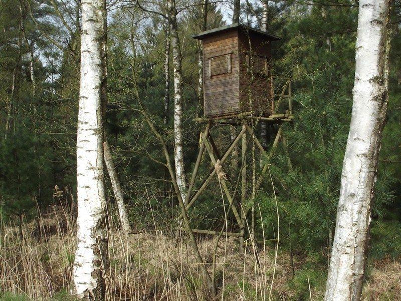 Hoogzit voor de jacht op de Galgenberg