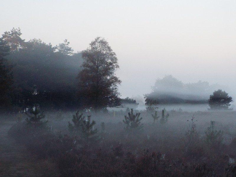 Een mistige ochtend