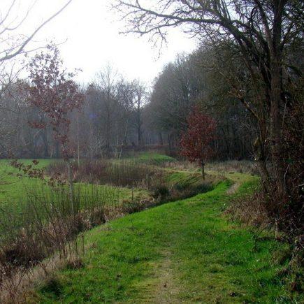 Wandelroute Ommetje de Lethe, te Bellingwolde