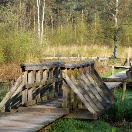 Wandelroute Landgoed de Hoevens-tocht, te Poppel