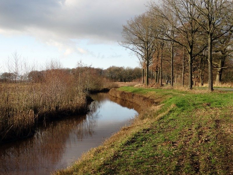 Het pad langs het Ellersinghuizerveld.