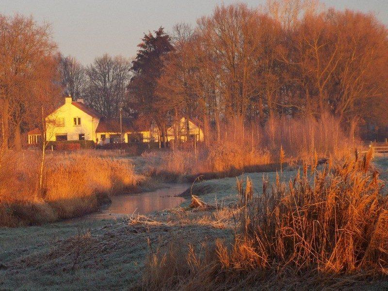 Tungelroyse Beek in het ochtendlicht