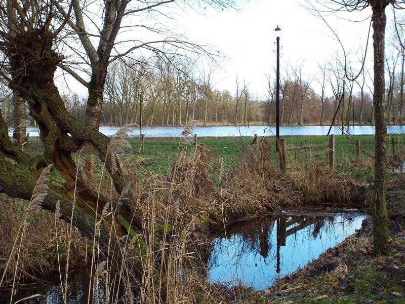 Op achtergrond waterplas, s'winters populaire schaatsbaan