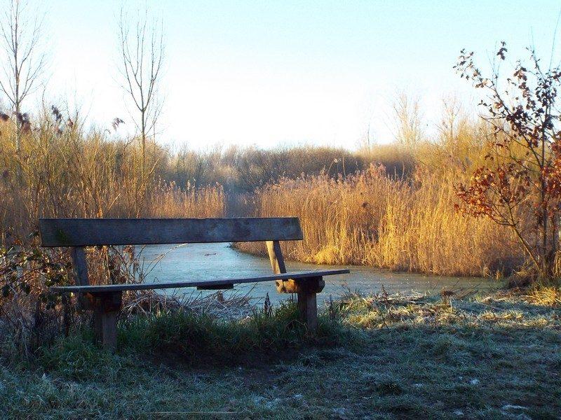 Waterbergingsgebied Starkriet, de Aa