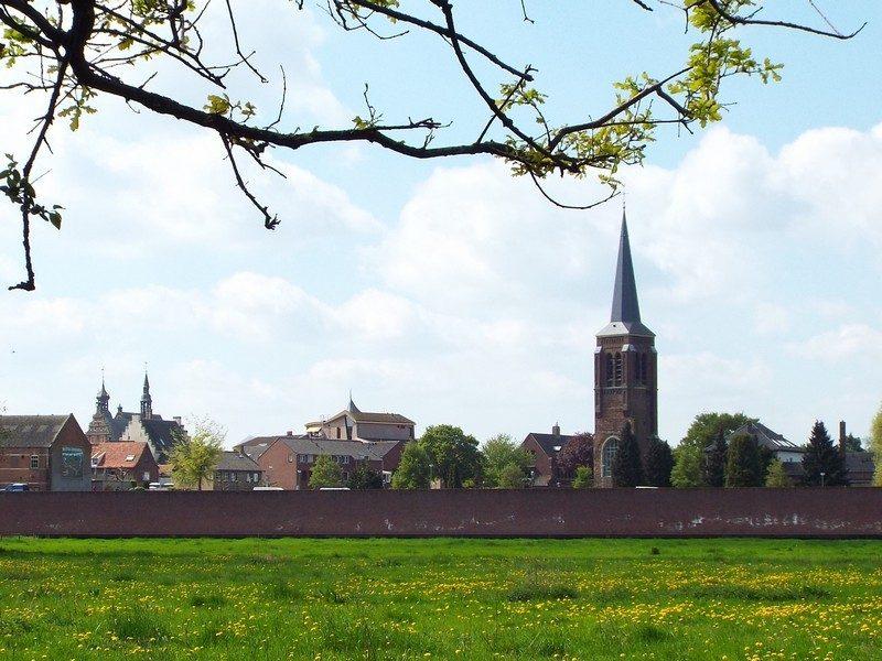In de verte de Oude Martinustoren