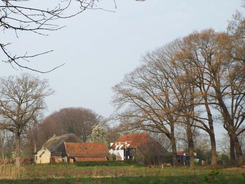 Boerderij in landgoed Sterrebos