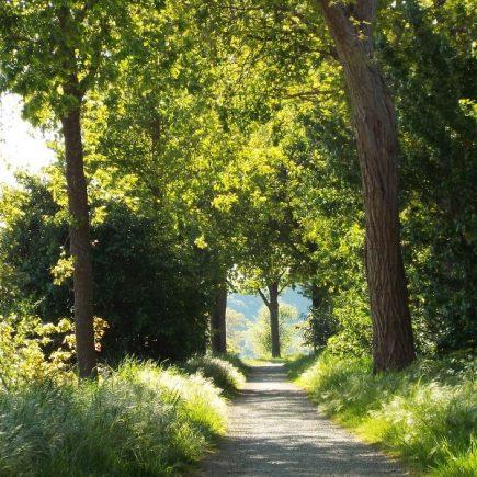 Dijken-route, te Den Dungen