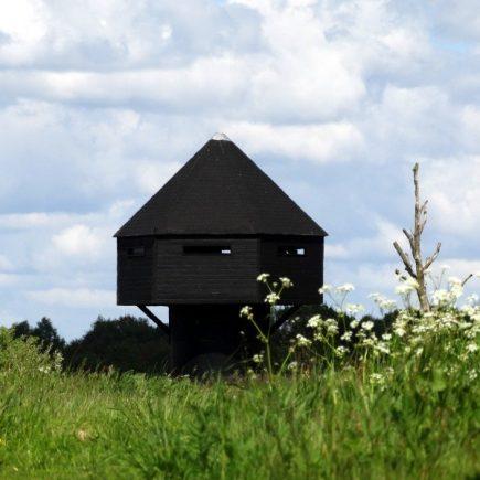 Wandelroute Naar vogelkijkhut Diependal, te Hooghalen