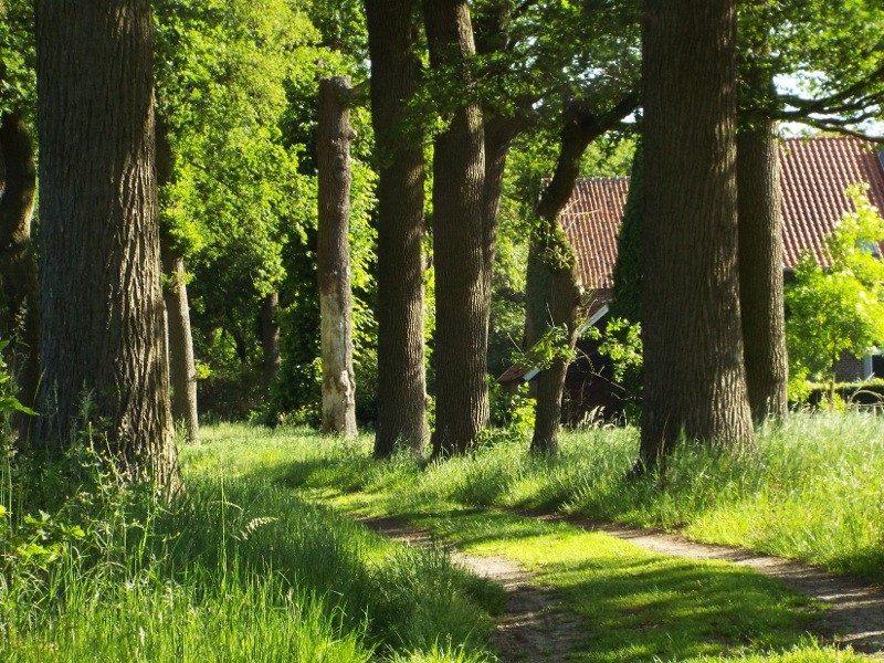 Pad langs boerderij Kloosterhof