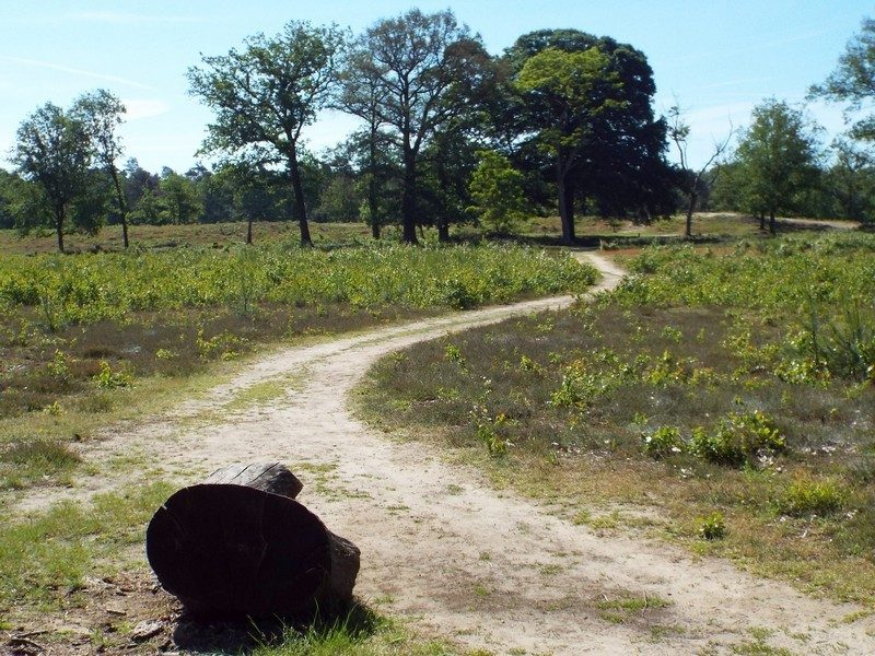 Natuurgebied het Leudal