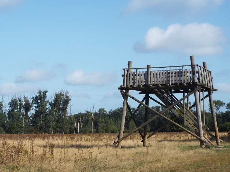 Uitkijktoren met zicht op het beekdal