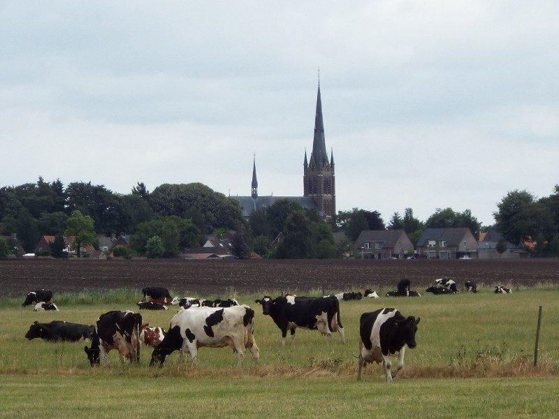In de verte de kerk van Liessel